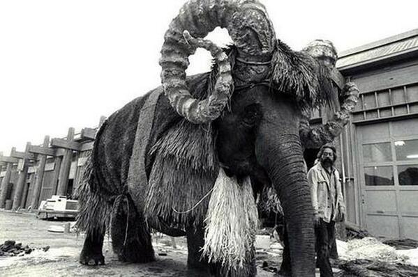 10-bantha-elephant