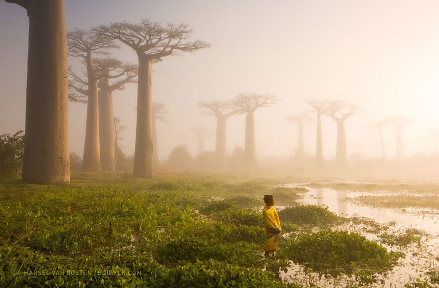 national-geographic-photo-of-the-day-internet-favorites-2015-33__880