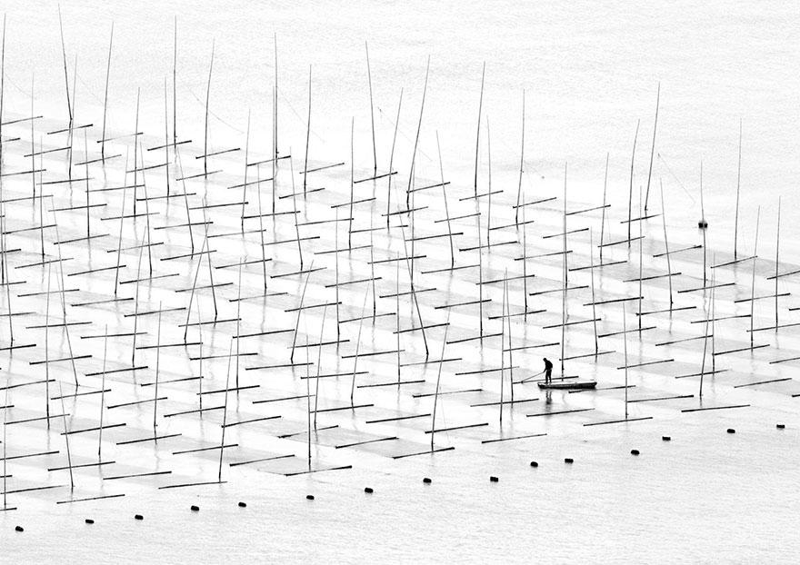 Фермер в морето (Китай)