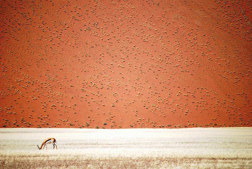 Пустинята на Намибия