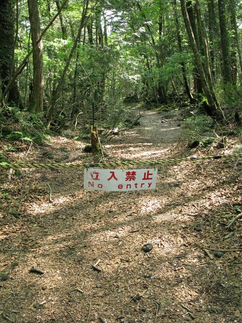 Аокигахара