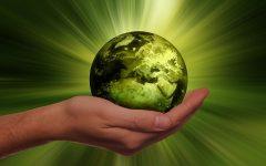екология